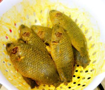 Tel koi or koi fish in mustard oil gravy bengali recipe for Koi carp fry